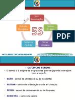 Apresentação - 5S