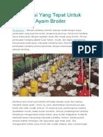Konstruksi Yang Tepat Untuk Kandang Ayam Broiler