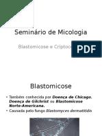 Seminário de Micologia