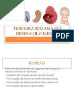 06-Embriologia - Terceira Semana