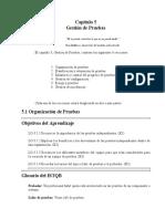 Pruebas de Software-Gestion de Pruebas