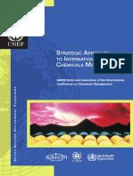 SAICM_publication_ENG.pdf