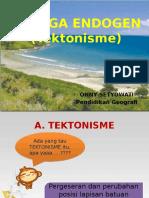 TENAGA ENDOGEN (tektonisme)