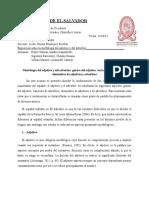 Morfología Del Adjetivo y Del Adverbio