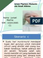 PBL Blok 4 (Albino)