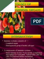 K - 3 Histology of Lymphoid Organ
