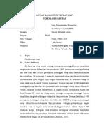 SAP PREEKLAMSI.doc