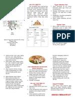 leaflet diit CKD.doc