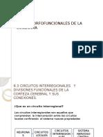 circuitosinterregionales-130727115227-phpapp01