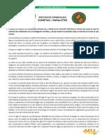 Cometas (Barriletes, papalotes).pdf