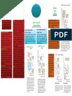 mindmap microeconomia capitulo14