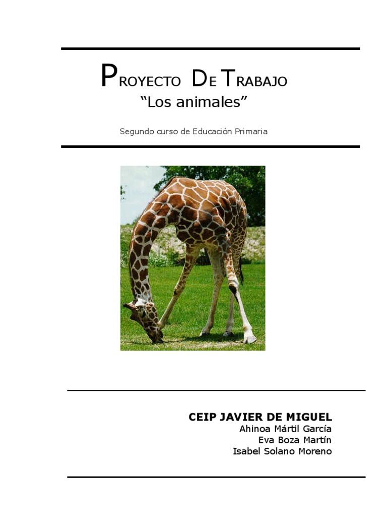 Proyecto De Los Animales