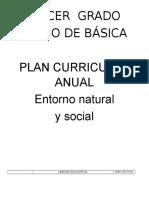plan anual entorno.docx
