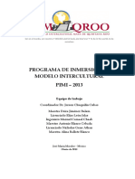 PIMI 2013 V4