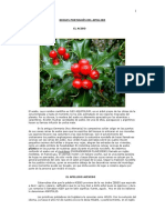 origenapellidoacebedo (1).pdf