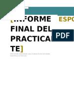 Practicante Informe Final