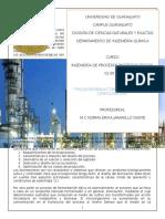 Proyecto_Biorreactores.docx