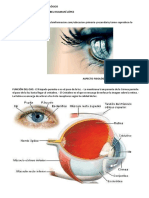 Aspecto Fisiológico y Neurológico PDF