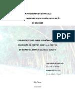 Carvao de Bambusa Vulgaris - Costa - USP