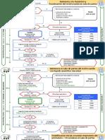 Algoritmos RCP Neonatal 2016