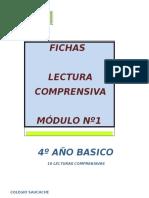 Fichas de Lecturas