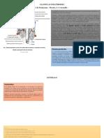 Glandulas Paratiroides y Estómago