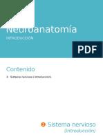 2. Neuroanatomía. Introducción