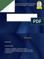 Patologia Del Puerperio