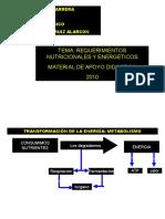 Requerimientos Nutric y Energéticos