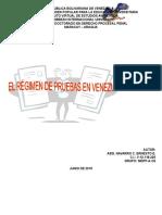 Monografia Regime de Pruebas