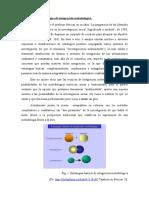 311590631 Principales Estrategias de Integracion Metodologica