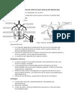 Infarto Medular 1