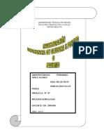 FAVISMO GRUPO 2.doc