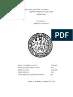 Informe de practicas de laboratorio(biología)