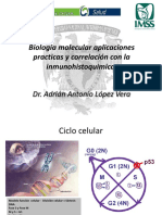 Inmunohistoquimica 06-11-15