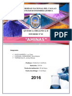 5to Informe AMINAS.docx12