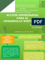 accion empresarial.pptx