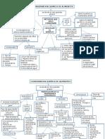 Mapa Conceptual Conservacion Quimica de Alimentos