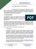 La Psicologia Organizacional y Las Organizaciones