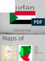 Sudan Country Project
