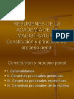 Constitución y principios Proceso Penal