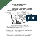 Energía_Equilibrio_y_Retroalimentación.pdf