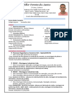 CURRICULUM VITAE - Elber Ferreira dos Santos rev02.pdf