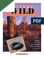 Summer 2008 Arizona Wild