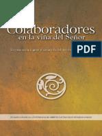 Colaboradores en La Viña Del Señor_ Un Recurso Para Guiar El Desarrollo Del Ministerio Eclesial Laico