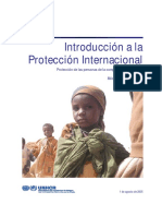 Introduccion a La Proteccion Internacional