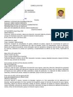 DOMINGO cv 1 (1).doc