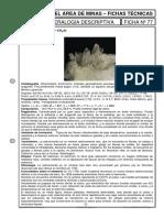 estroncianita.pdf