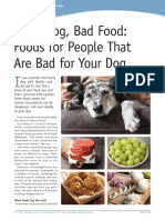 Good Dog, Bad Food