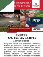 Presentación Registro Src No Étnicos Mayo 2016